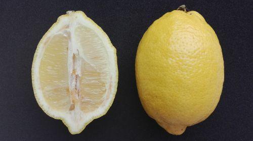 maistas,citrusiniai,citrina,vaisiai