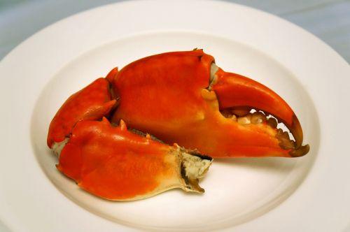 food as crab ca mau