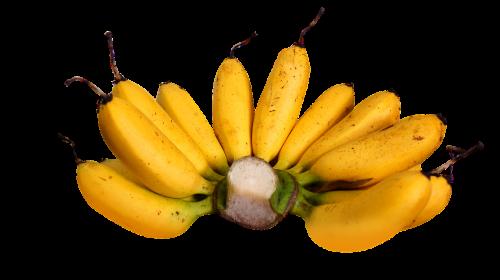 food banana high browned
