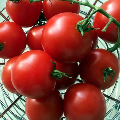 food tomato grow