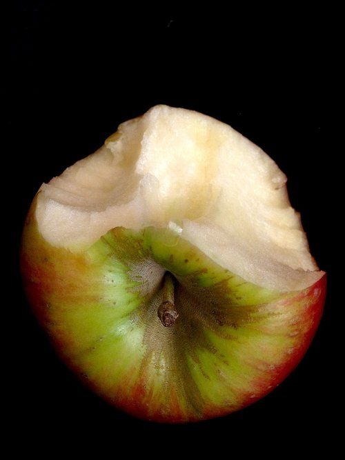 food  fruit  nature