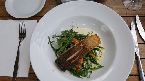 food  plate  fork
