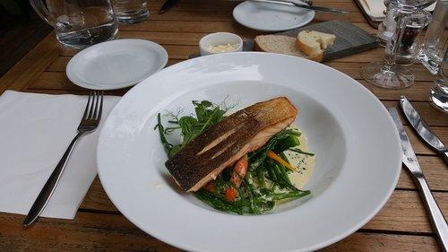 food  plate  meal