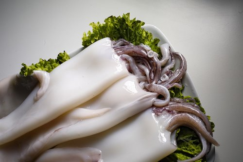 food  squid  high kitchen