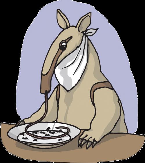 food plate table