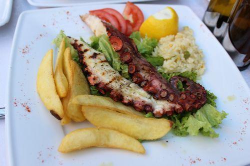 food octopus seafood