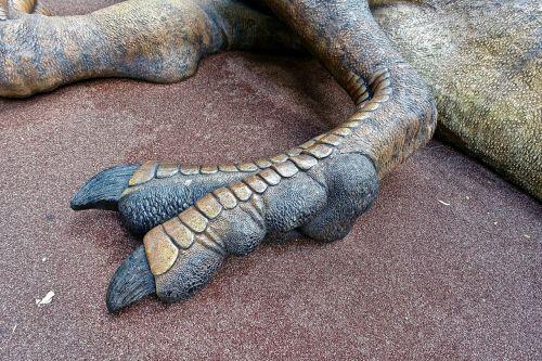 foot dinosaur toes