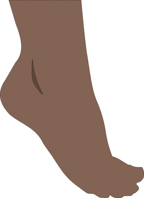 foot feet toes