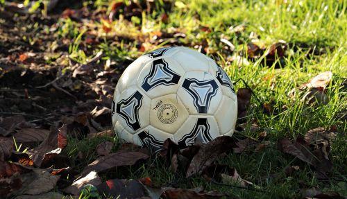 football autumn autumn champions