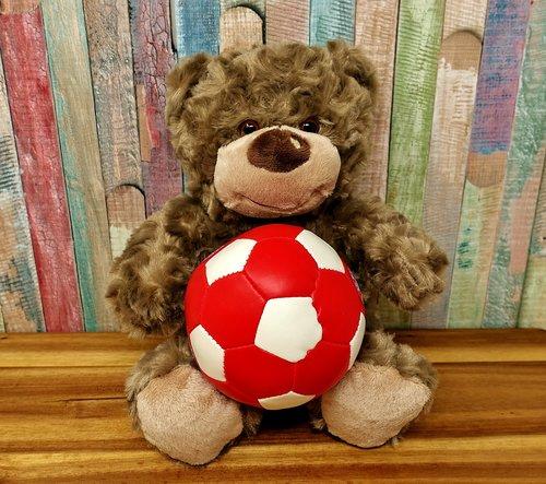football  teddy  cute