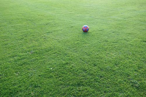 football sports ground ball