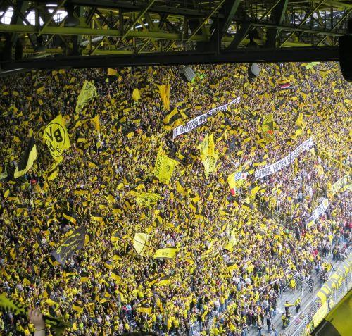 football fans football stadium football