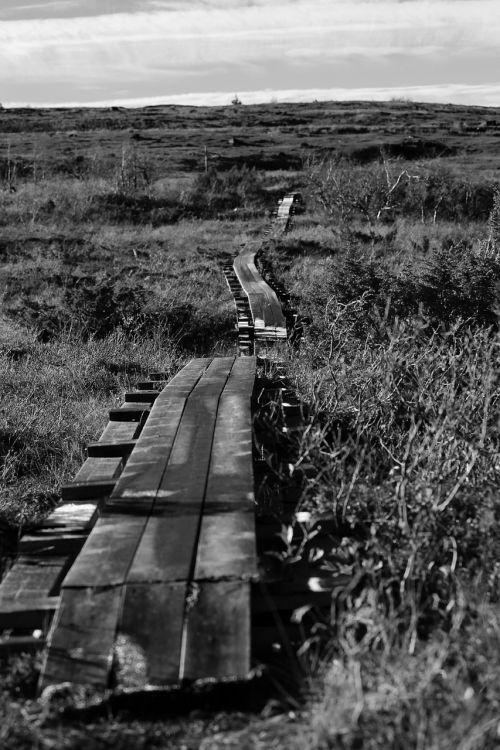 footbridge mountain hiking trail