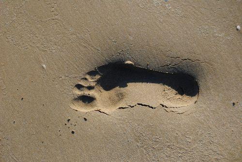 footprint beach cadiz