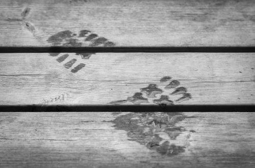 footprint wet step