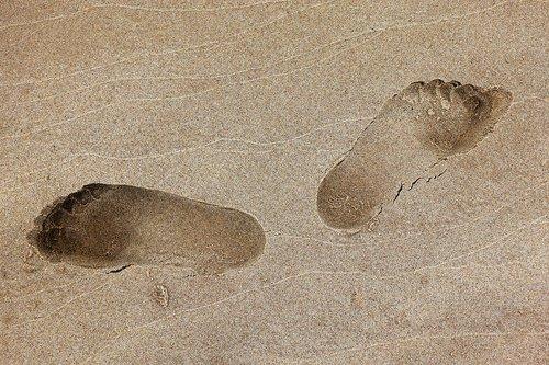 footprint  foot  print
