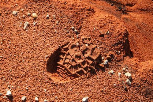 footprint track foot print