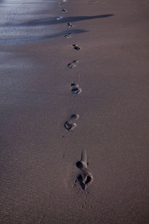 footprint beach traces