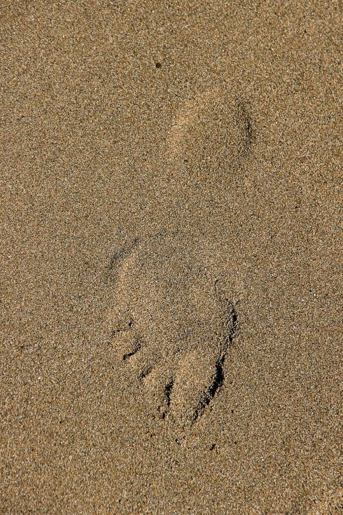 footprint track in the sand sand