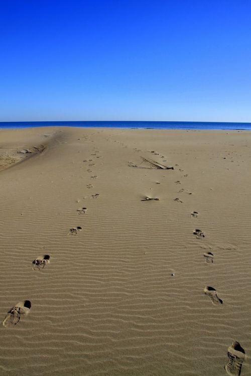 footprints sand sea