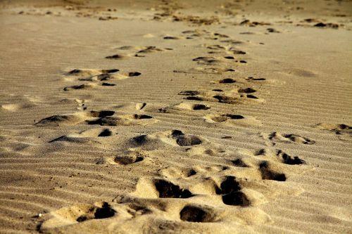 footprints sand walk