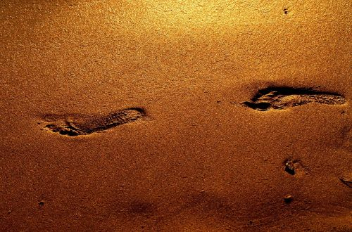 footprints gold step
