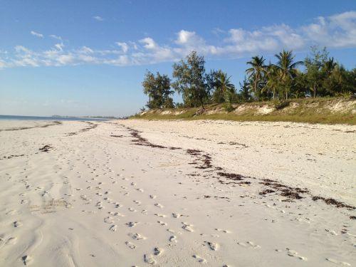 footprints footprints in the sand beach