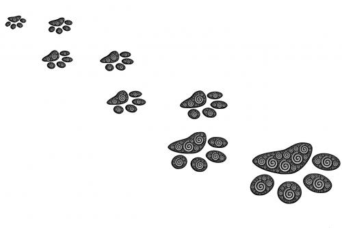 footprints path prints