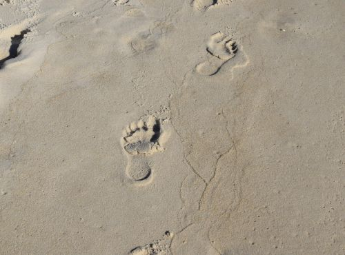 footprints in the sand footprints child