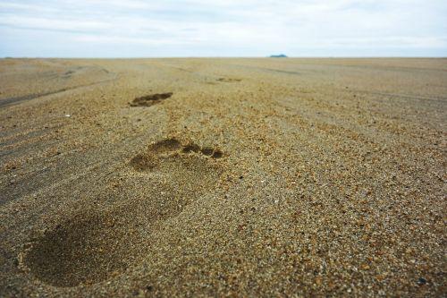 footsteps sand beach