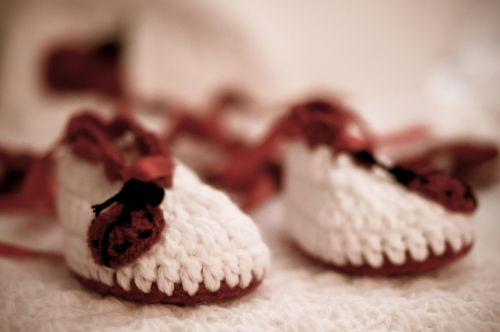footwear shoes little