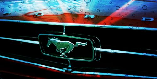 ford mustang mustang ford