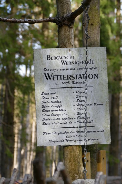 forest nature weather station
