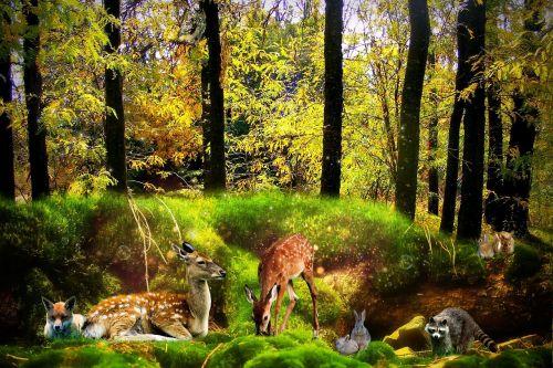 forest fantasy animals