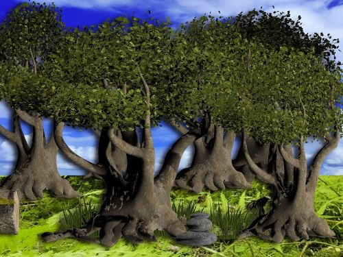 miškas,medis,fantazija,kraštovaizdis,senas,medžių giraitė,gamta,miškai,dykuma