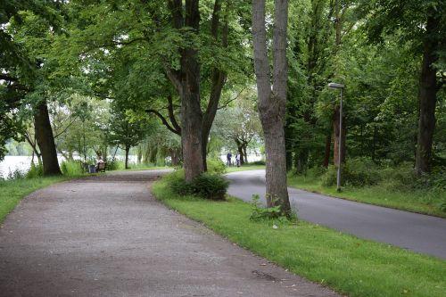 miškas,kelias,medžiai,gamta,lapai,žygiai,kraštovaizdis,takas,kelias,žalias,vaikščioti,kaimo kelias,parkas,maršrutas,kalnas,ežeras,ramus