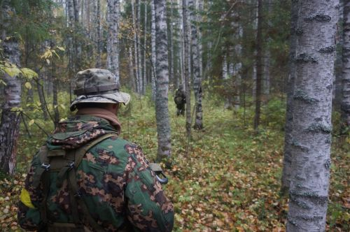 forest military camo