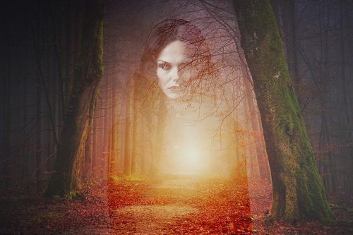 forest  ghost  gothic