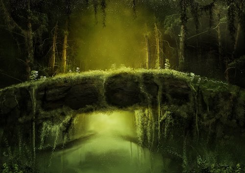 forest  mysterious  fantasy