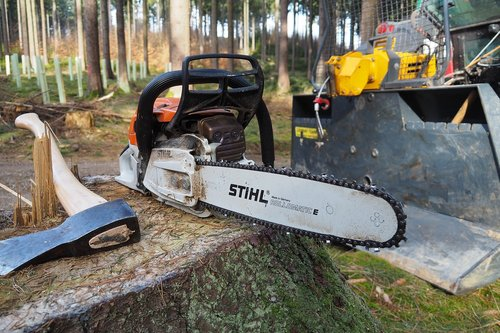 forest  chainsaw  forest work