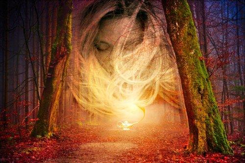 forest  light  spirit