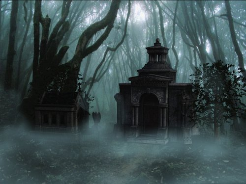 forest  haunted  mystical