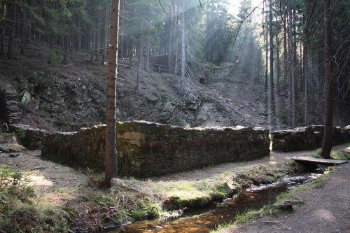forest bach röhr ditch