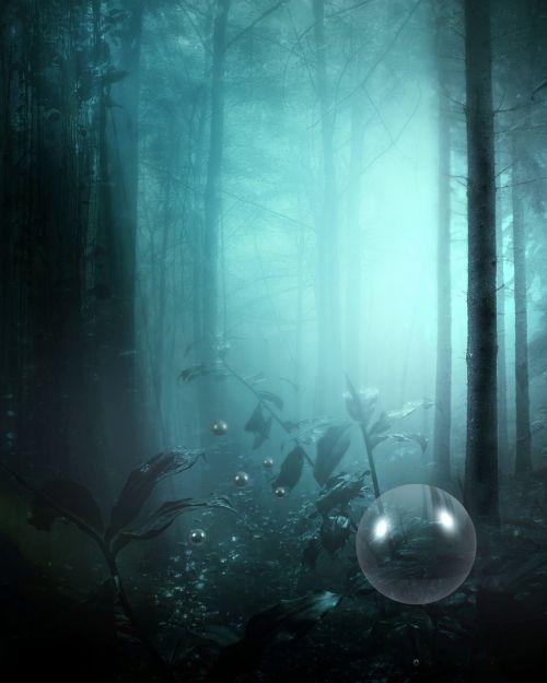 miškas, fantazija, tamsi, medžiai, lapija, šviesa, gamta, miško fantazija 2