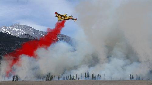 forest fire fire fighting aircraft fire