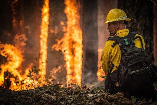 forest fire  wildfire  blaze
