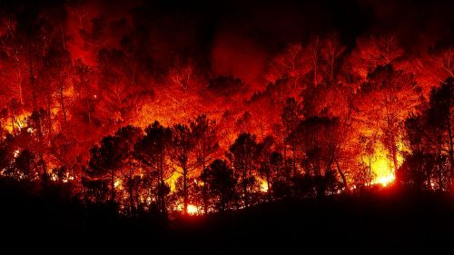 forest fires fire hell