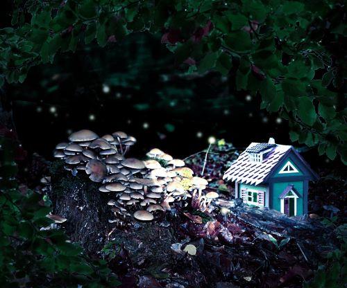 forest spirits cottage fantasy
