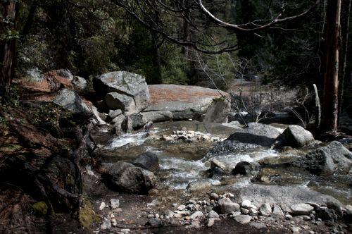 upė, srautas, srautas, teka, akmenys, šepetys, medis, miškas, Laisvas, viešasis & nbsp, domenas, miško srovė