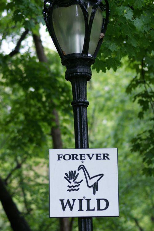 forever wild sign
